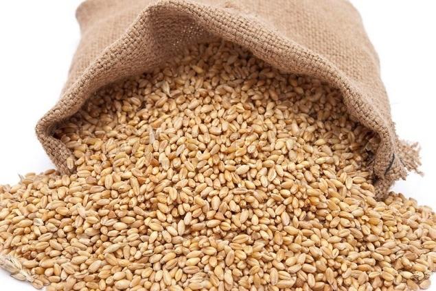 РФ за десять месяцев увеличила экспорт зерна на 12,3%