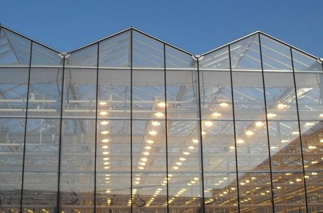 ВПриангарье обсудили строительство мощных тепличных комплексов