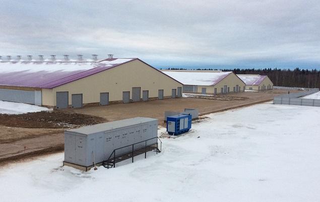ВПодмосковье появилась гигантская молочно-товарная ферма